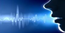 Ses Dalgaları 10. Sınıf Fizik