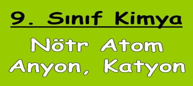 Nötr Atom, Anyon ve Katyon (İyon)