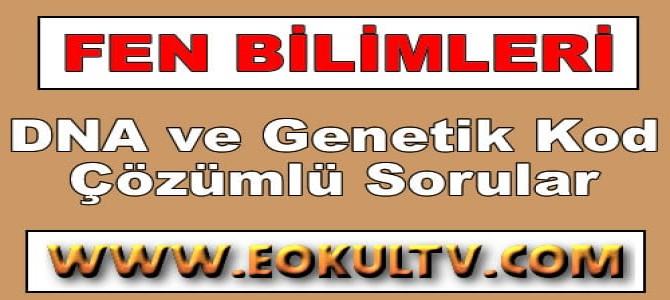 DNA ve Genetik Kod Çözümlü Sorular