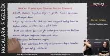 Dna Replikasyonu konu anlatımı video 12. sınıf biyoloji