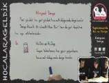 Kimyasal Denge 11. sınıf kimya