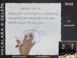 Üreme Sistemi ve Embriyonik Gelişim 11. sınıf biyoloji