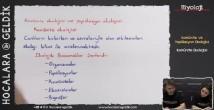 Komünite Ekolojisi 11. sınıf biyoloji