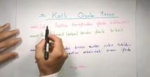 Katlı Oranlar Kanunu konu anlatımı video 10. sınıf kimya