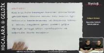 Savunma Sistemi Rahatsızlıkları konu anlatımı video 11. sınıf biyoloji