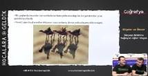 Uluslararası Ulaşım Hatları konu anlatımı video 10. sınıf coğrafya