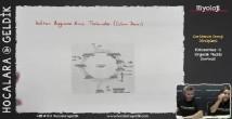 Fotosentez: Organik Moleküllerin Sentezi konu anlatımı video 12. sınıf biyoloji