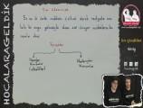 Sıvı Çözeltiler ve Çözünürlük 11. sınıf kimya