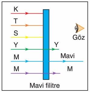 Işığın Filtrelerden Geçişi Konu Anlatımı Ders Notu 10. Sınıf Fizik