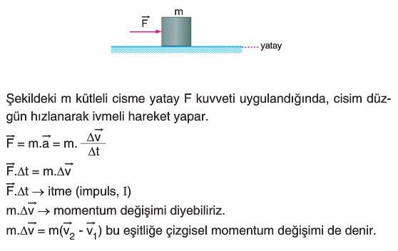 Image result for momentum konusu