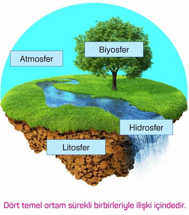 Biyosfer ... Temel tanımlar